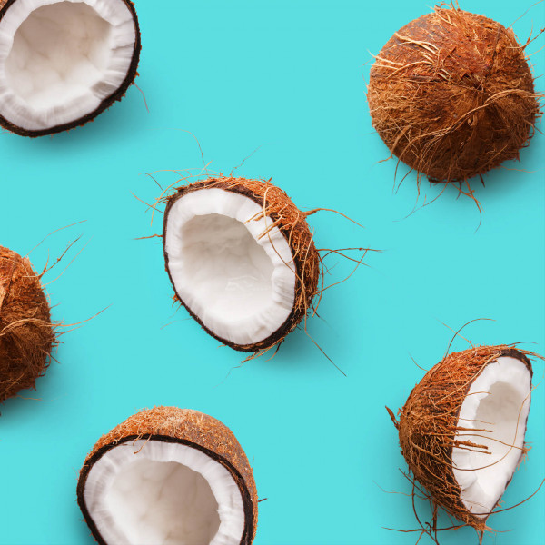 Trojka_Coconut_Mood